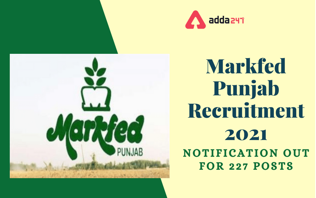 Markfed Punjab Recruitment 2021: Apply Online Extended For 227 Various Posts_30.1