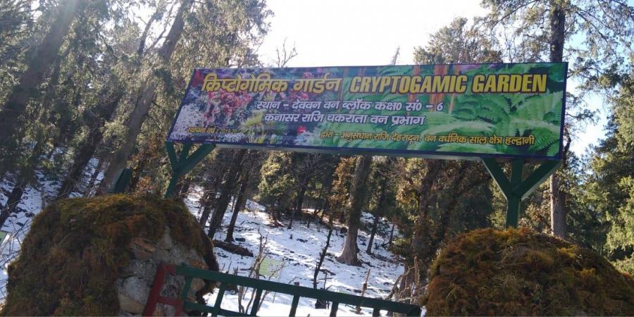 India's first Cryptogamic Garden Inaugurated in Uttarakhand  ഇന്ത്യയിലെ ആദ്യത്തെ ക്രിപ്റ്റോഗാമിക് ഗാർഡൻ ഉത്തരാഖണ്ഡിൽ ഉദ്ഘാടനം ചെയ്തു_40.1