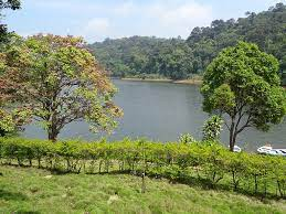 Sights of Pathanamthitta| Track to Kerala PSC and HCA| പത്തനംതിട്ടയുടെ കാഴ്ചകൾ - കേരളാ PSC, HCA എന്നിവയിലേക്ക് ട്രാക്ക് ചെയ്യുക_100.1