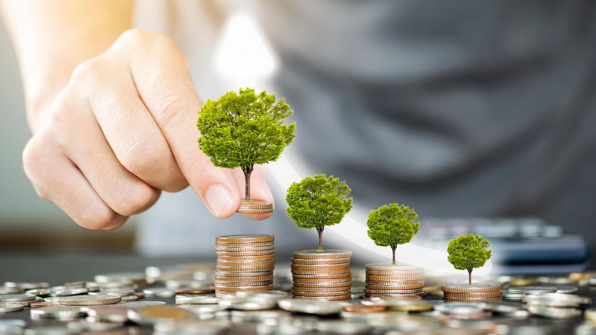HDFC unveils 'Green & Sustainable' fixed deposit  HDFC ' ഹരിതവും സുസ്ഥിരവുമായ ' സ്ഥിര നിക്ഷേപം അവതരിപ്പിച്ചു_40.1