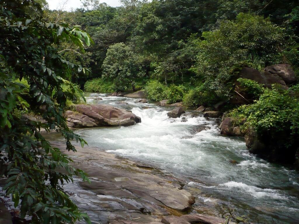 കേരളത്തിലെ 10 മനോഹരമായ നദികൾ(10 Beautiful Rivers in Kerala) | KPSC & HCA Study Material_120.1
