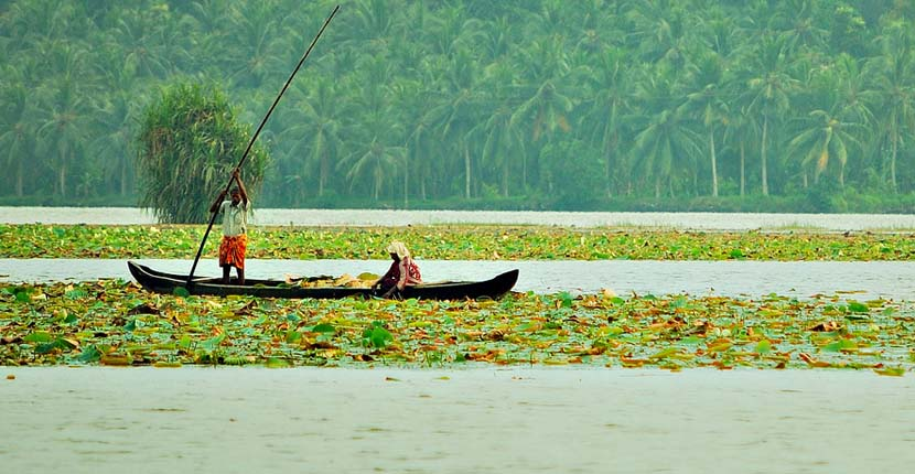 കേരളത്തിലെ 10 പ്രശസ്തമായ തടാകങ്ങൾ (10 Popular Lakes in Kerala )_110.1