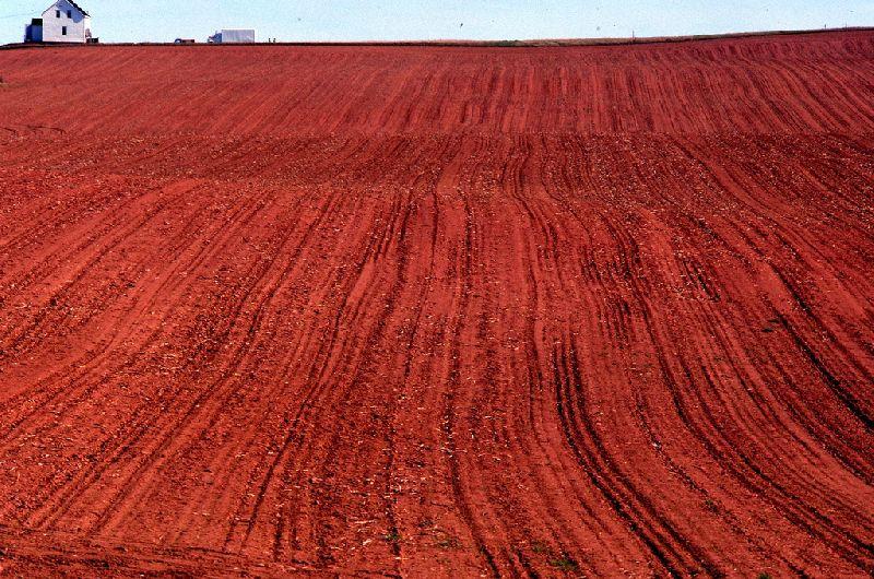 ഇന്ത്യയിലെ പല തരം മണ്ണുകൾ: വർഗ്ഗീകരണവും സവിശേഷതകളും(Soils of India: Classification and Characteristics)_70.1