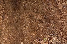 ഇന്ത്യയിലെ പല തരം മണ്ണുകൾ: വർഗ്ഗീകരണവും സവിശേഷതകളും(Soils of India: Classification and Characteristics)_120.1
