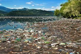പരിസ്ഥിതിയിലെ മലിനീകരണ തരങ്ങൾ (Types of Pollution in environment)_60.1