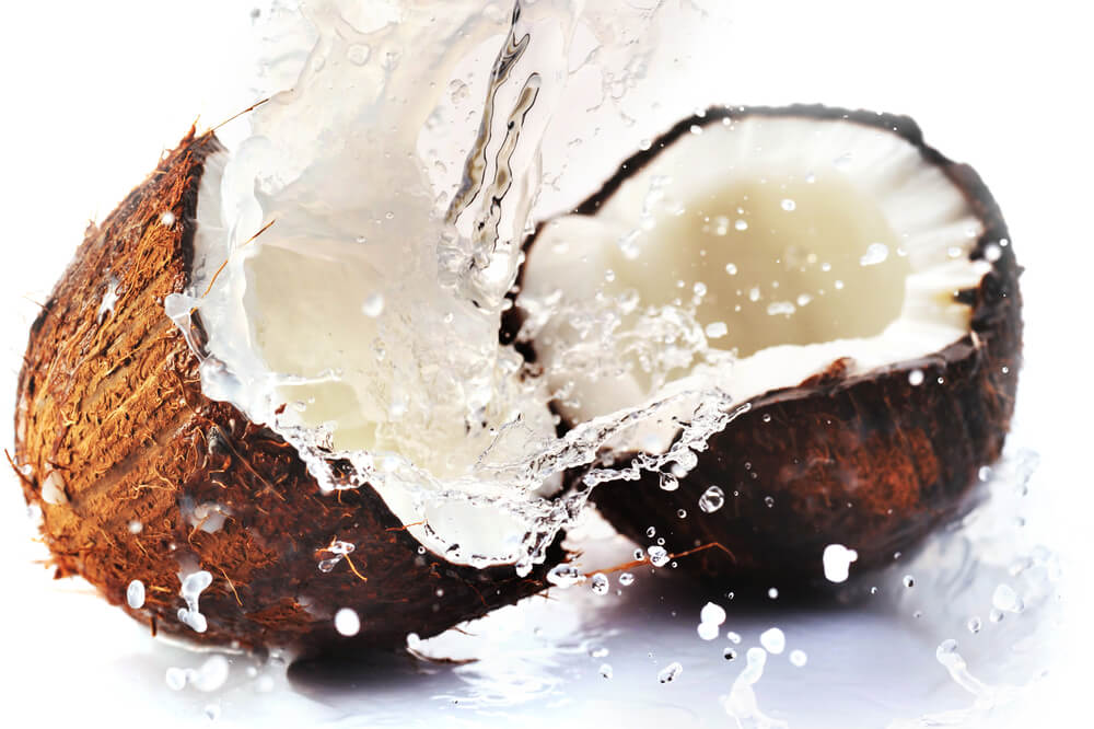 ലോക നാളികേര ദിനം (World Coconut day) 2021 സെപ്റ്റംബർ 2_50.1