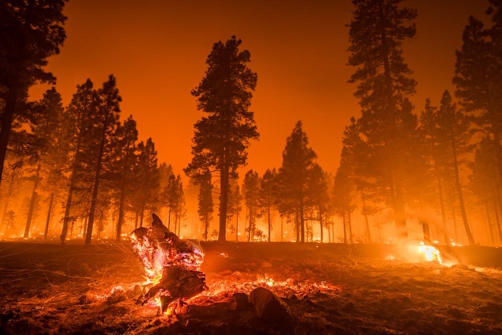 പ്രകൃതി ദുരന്തങ്ങളുടെ തരങ്ങൾ (Types Of Natural Disasters)_120.1