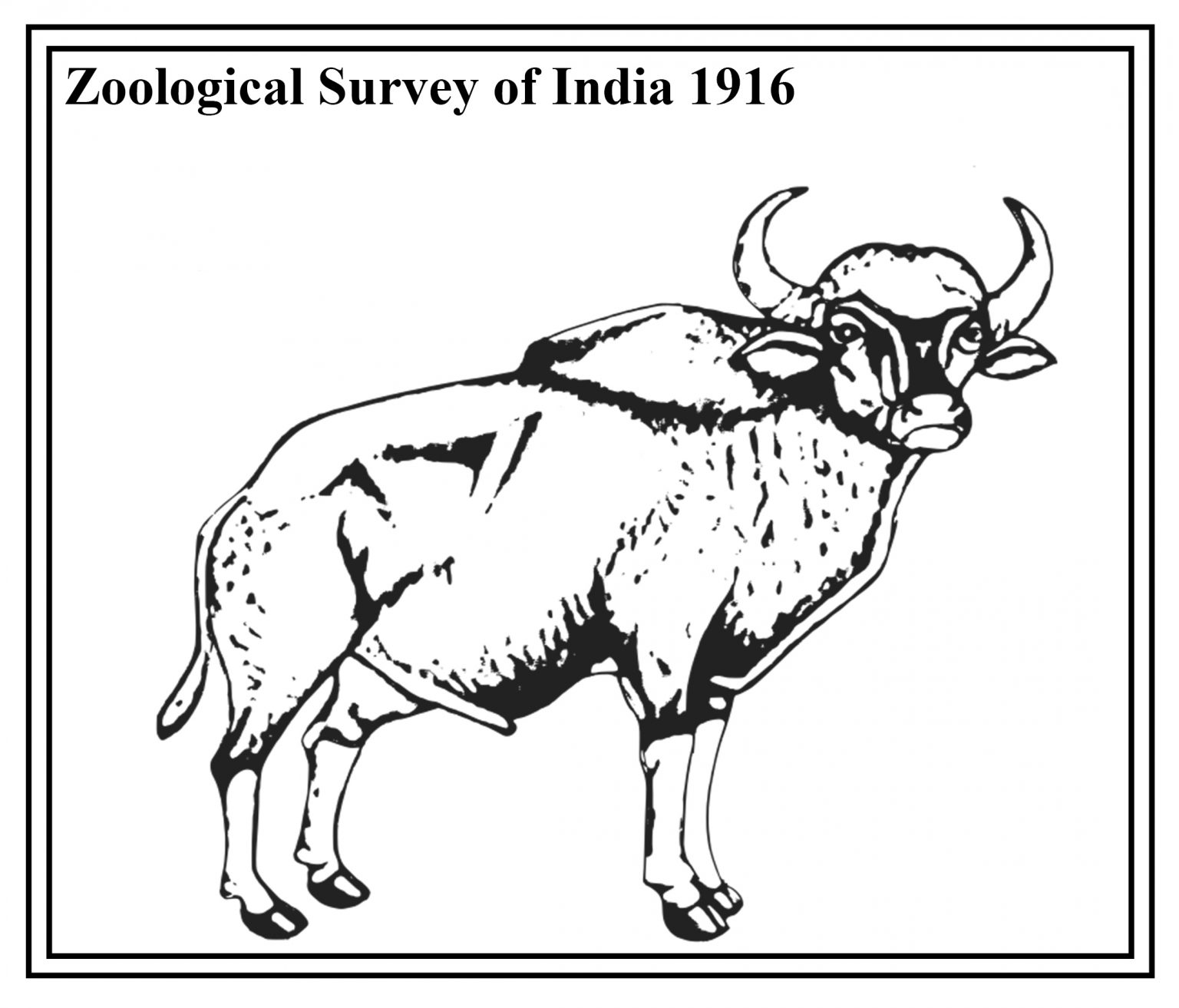Zoological Survey of India gets 1st female director_40.1
