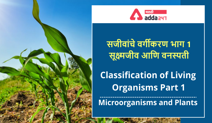 Classification of Living Organisms Part 1-Microorganisms and Plants_40.1