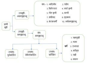 सजीवांचे वर्गीकरण भाग 2 - प्राणी | Classification of Living Organisms Part 2- Animals_50.1