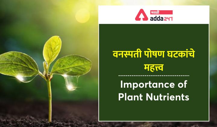 Importance of Plant Nutrients | वनस्पती पोषण घटकांचे महत्त्व: MPSC अभ्यास साहित्य_40.1