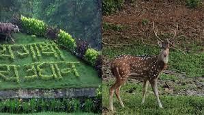 Forests in Maharashtra | महाराष्ट्रातील वने व वनांचे प्रकार आणि अभयारण्ये_80.1