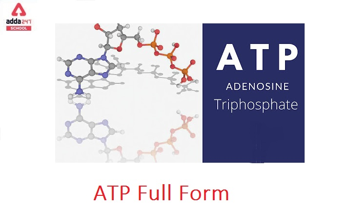 What is the full form of ATP in Biology?   adda247_40.1