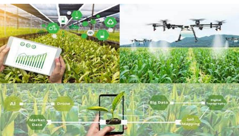 Role of Information Technology in Agriculture(Hindi)_40.1