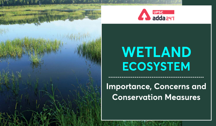 Wetland Ecosystem: Importance, Concerns and Conservation Measure_30.1