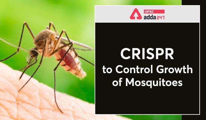 मच्छरों की वृद्धि को नियंत्रित करने हेतु क्रिस्पर_40.1