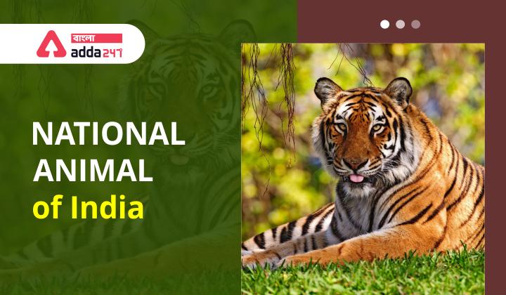 ভারতের জাতীয় পশু | National Animal of India_40.1