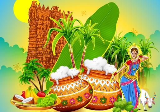 Pongal Festival | பொங்கல் |_40.1