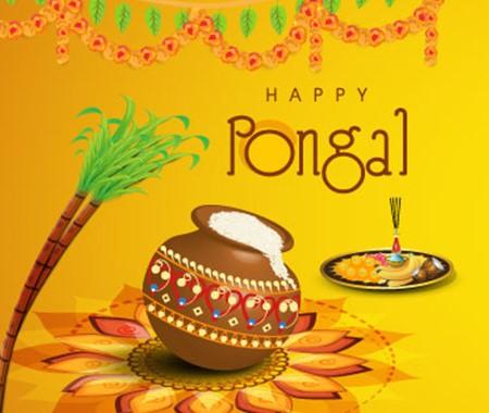 Pongal Festival | பொங்கல் |_70.1