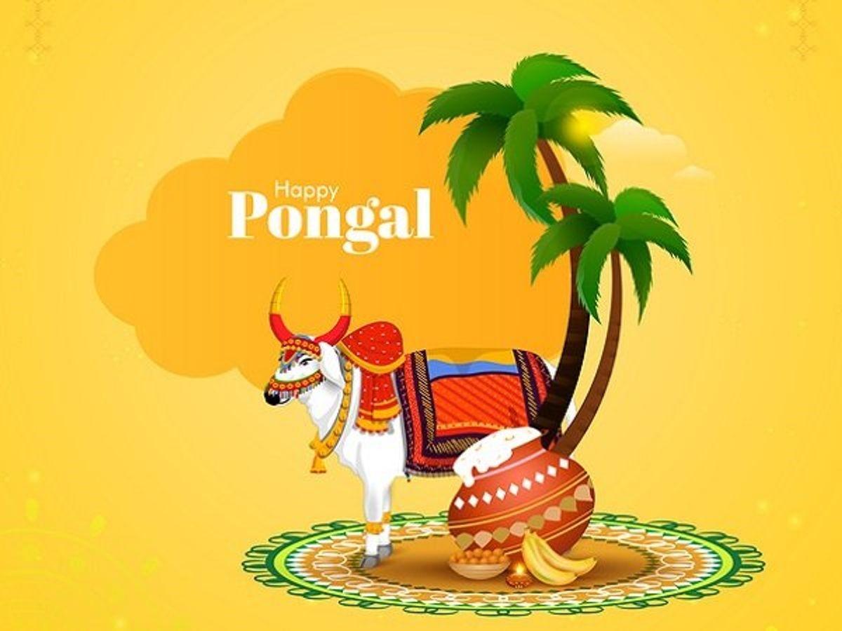 Pongal Festival | பொங்கல் |_80.1