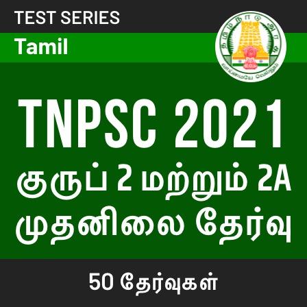 Tamil New Year Special Offers on Megapack | தமிழ் புத்தாண்டு சிறப்பு சலுகைகள் |_50.1