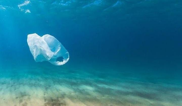 India-Germany enter into agreement to prevent plastic waste entering oceans | பிளாஸ்டிக் கழிவுகள் கடல்களில் நுழைவதைத் தடுக்க இந்தியா-ஜெர்மனி ஒப்பந்தம் செய்கின்றன |_40.1