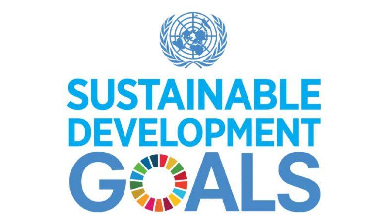 India slips two spots on 17th Sustainable Development Goals report | 17 வது நிலையான அபிவிருத்தி இலக்குகள் அறிக்கையில் இந்தியா இரண்டு இடங்கள் சரிந்துள்ளது |_40.1