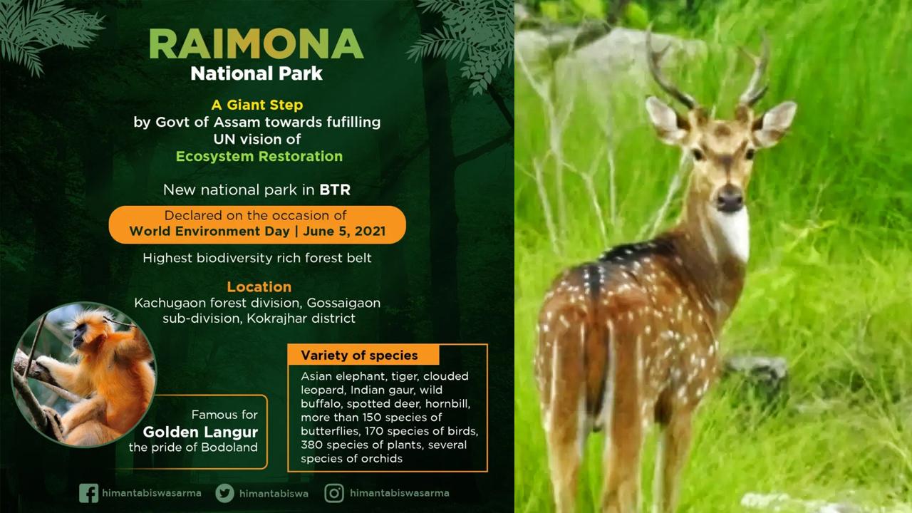Assam govt names Raimona reserve forest sixth national park   அஸ்ஸாம் அரசு ரைமோனா ரிசர்வ் வன பகுதியை ஆறாவது தேசிய பூங்காவாக அறிவித்தது.  _40.1