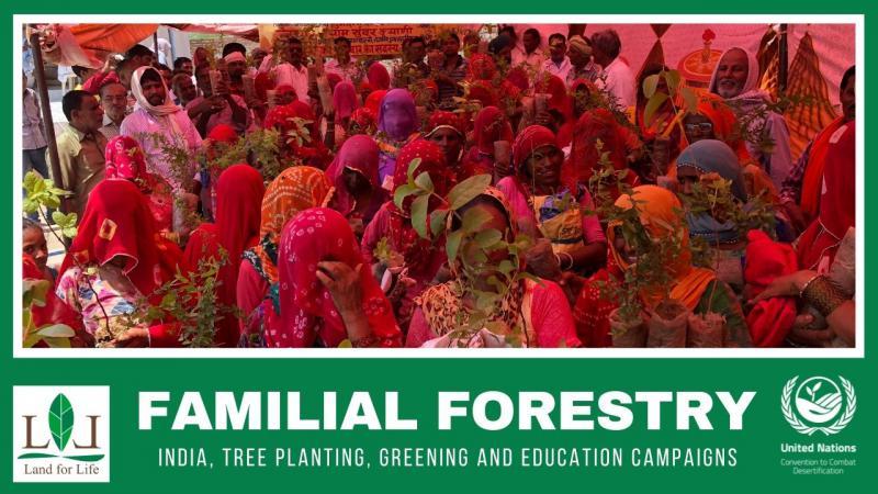 Environmental Organisation 'Familial Forestry' wins prestigious UN Award | சுற்றுச்சூழல் அமைப்பு 'குடும்ப வனவியல்' மதிப்புமிக்க ஐ.நா விருதை வென்றது |_40.1