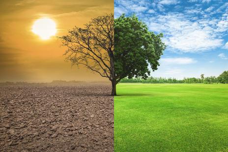 CLIMATES OF TAMIL NADU | தமிழ்நாட்டின் காலநிலைகள் |_50.1