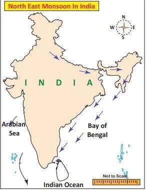 CLIMATES OF TAMIL NADU | தமிழ்நாட்டின் காலநிலைகள் |_90.1