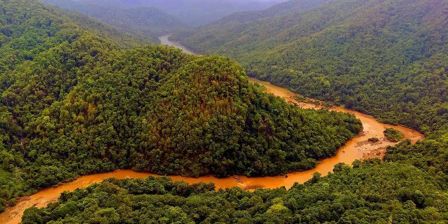 Western Ghats of India | இந்தியாவின் மேற்குத் தொடர்ச்சி மலைகள் |_50.1