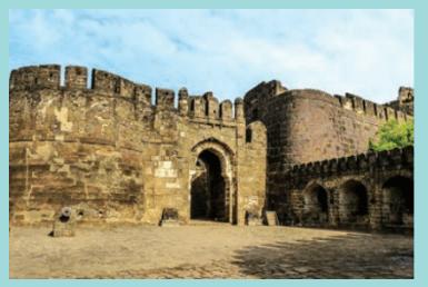 டெல்லி சுல்தானியம் | The Delhi Sultanate |_50.1