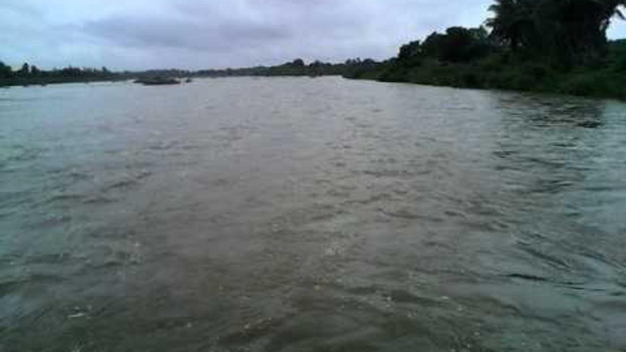 தமிழ்நாட்டில் உள்ள ஆறுகள் | Rivers in Tamil Nadu |_70.1