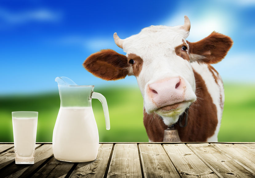 World Milk Day celebrated on 01st June | ప్రపంచ పాల దినోత్సవం : జూన్ 01 |_40.1