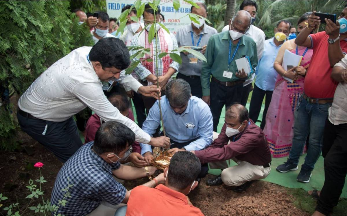 World's first-ever genetically modified rubber planted in Assam | అస్సాంలో మొట్టమొదటి జన్యుపరంగా మార్పు చేయబడిన రబ్బరు మొక్కను నాటడం జరిగింది |_40.1