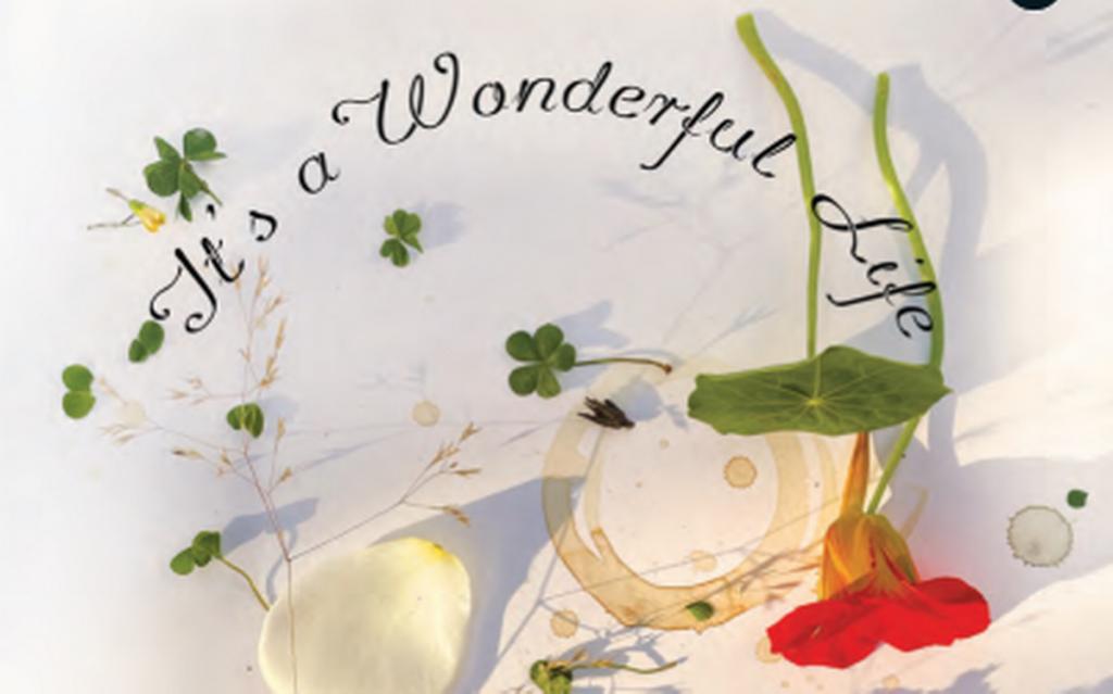 Ruskin Bond's book titled 'It's a wonderful Life' launched   రస్కిన్ బాండ్ రచించిన కొత్త పుస్తకం 'ఇట్స్ వండర్ఫుల్ లైఫ్'  _40.1