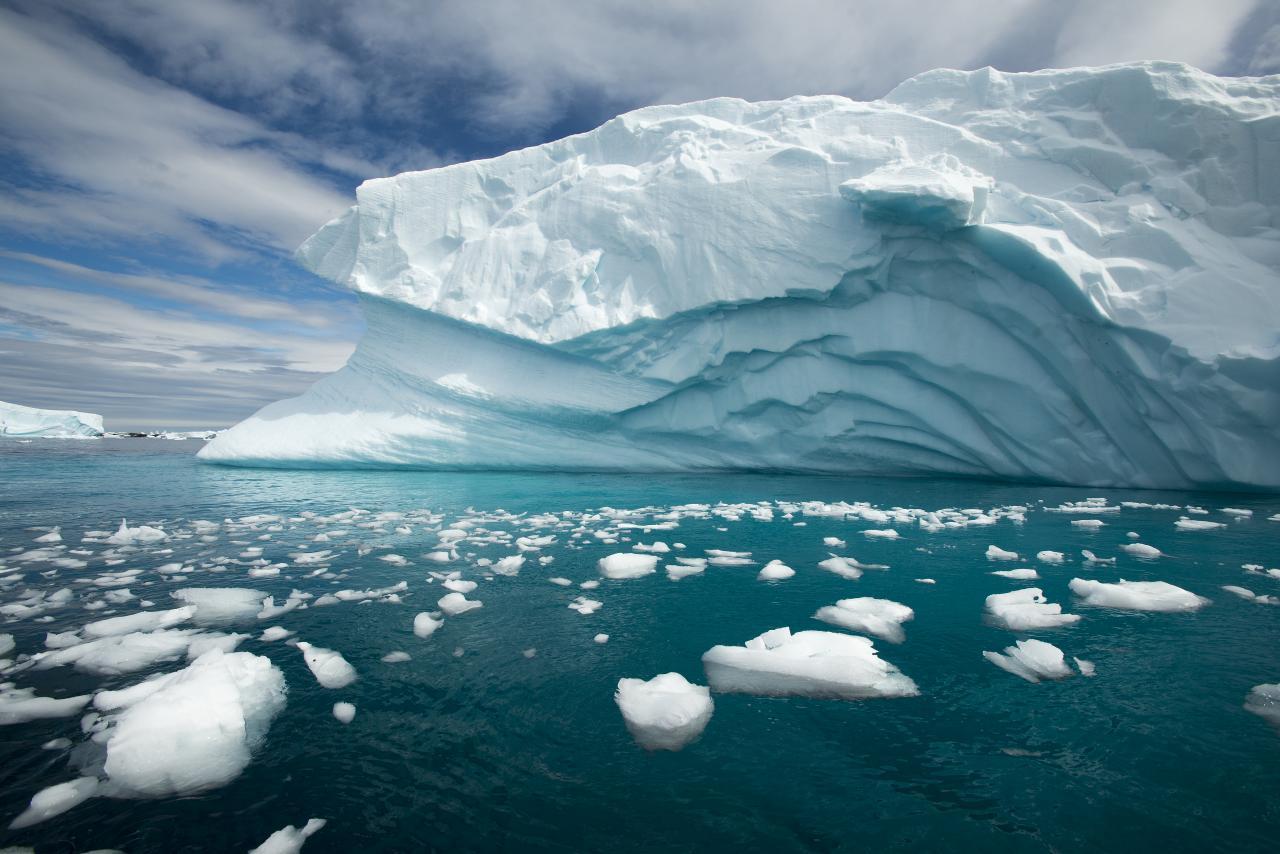 Antarctica hits record temperature of 18.3 degrees Celsius | అంటార్కిటికాలో అత్యధికంగా 18.3 డిగ్రీ సెల్సియస్ ఉష్ణోగ్రత నమోదు |_40.1