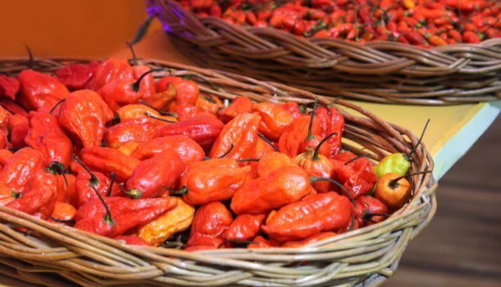 Bhoot Jolokia chillies from Nagaland exported to London   నాగాలాండ్ నుండి భూత్ జోలోకియా మిరపకాయలు లండన్కు ఎగుమతి చేయబడ్డాయి  _40.1