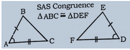 Congruence And Similarity Of Triangles : Download Maths Notes For CTET Exam Free PDF_80.1