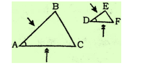 Congruence And Similarity Of Triangles : Download Maths Notes For CTET Exam Free PDF_150.1