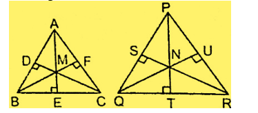 Congruence And Similarity Of Triangles : Download Maths Notes For CTET Exam Free PDF_180.1