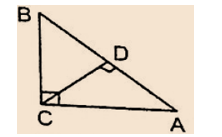 Congruence And Similarity Of Triangles : Download Maths Notes For CTET Exam Free PDF_210.1