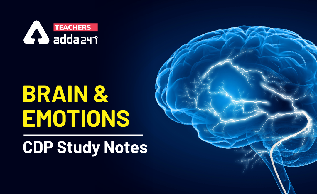 Brain and Emotions: Download Child Pedagogy Study Notes Free PDF For REET Exam_40.1